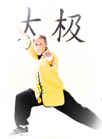Bio for Sifu Brandon Jones